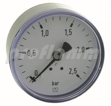 "Rohrfedermanometer 1/4"" - 0-6 bar"